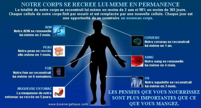Crbst notre corps se recree vos pensees0